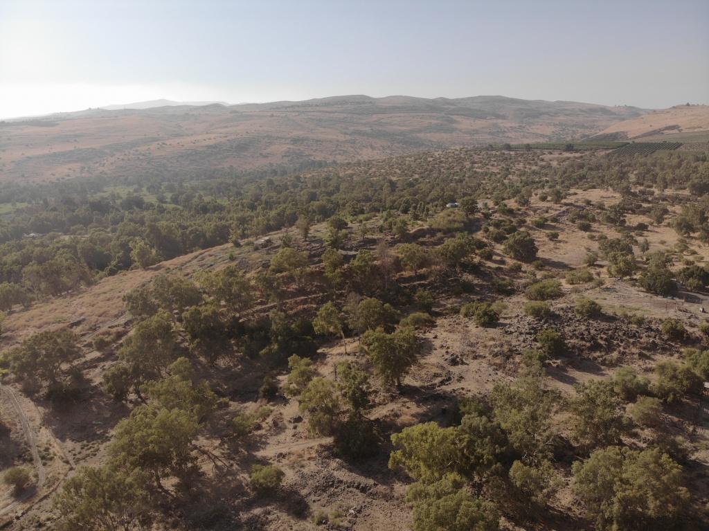 Bethsaida, Lower Galilee
