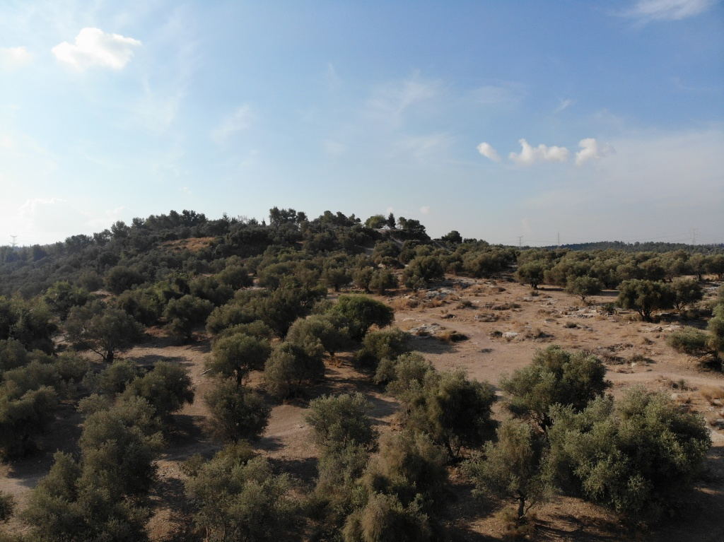 Ancient Tell Hadid and Judea Hills, Israel